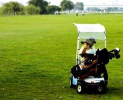 golf ladies wear (1)2