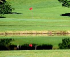 golf ladies wear (4)2