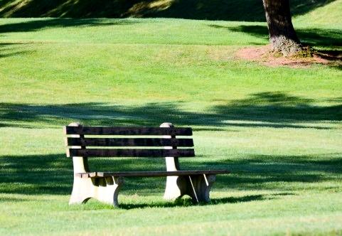 golf ladies wear (2)2