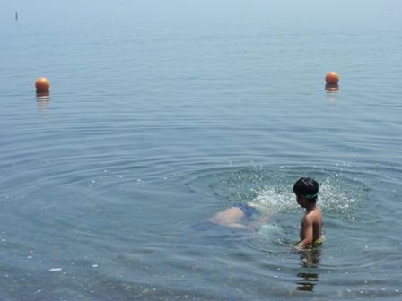 琵琶湖 泳ぐ
