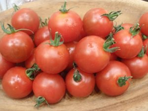 おいしっくす みつトマト