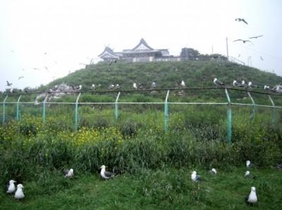 東北 蕪嶋神社
