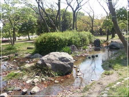 梅小路公園 河原