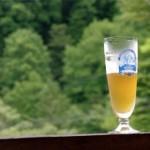 クラフトビール(地ビール)人気ランキング2013