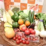 ナマだからこそ特別おいしい!おいしっくす有機野菜を紹介!