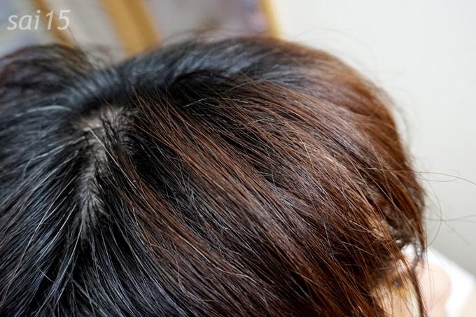 ヘナ使用前 白髪染め シムカラーEX (1)