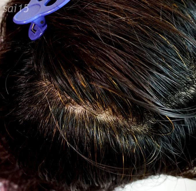 ヘナ使用後・ 白髪染め シムカラーEX (17)