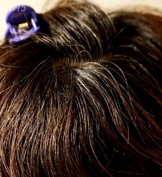 ヘナ使用前 白髪染め シムカラーEX (4)