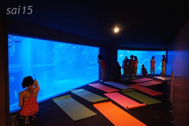 VIPルーム 海遊館ヨガxベルメゾン (6)