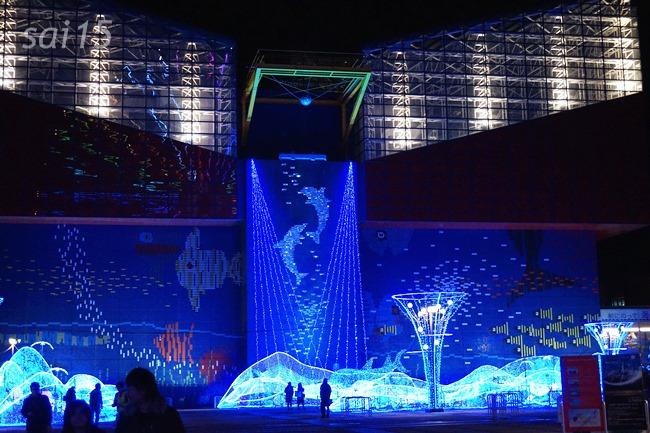 ライトアップ中 海遊館ヨガxベルメゾン (3)
