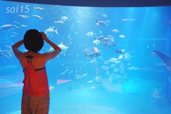 ヨガウェアのうしろすがた 海遊館ヨガxベルメゾン (18)