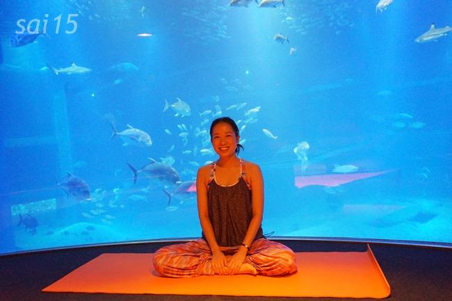 ブン先生笑顔 海遊館ヨガxベルメゾン (49