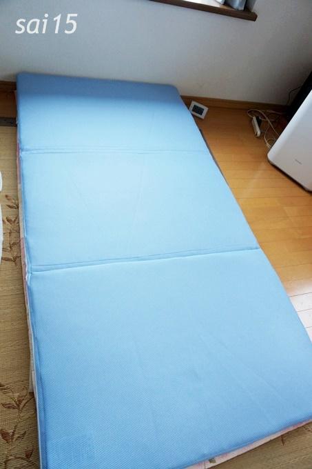 夏用 トゥルースリーパー セロ (9)